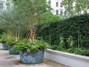 Filler: The Courtyard Copper Garden Planters - Large