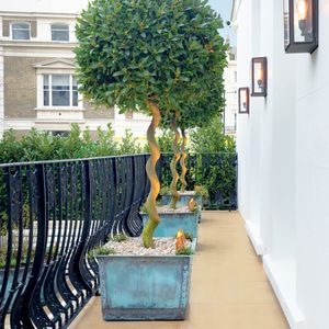 Filler: The Square Copper Garden Planter