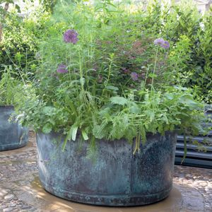 Filler: The Courtyard Copper Planter - Medium
