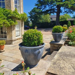 Filler: The Cotswold Lion Lead Garden Planter