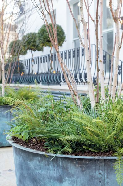 The Courtyard Copper Garden Planter - Medium