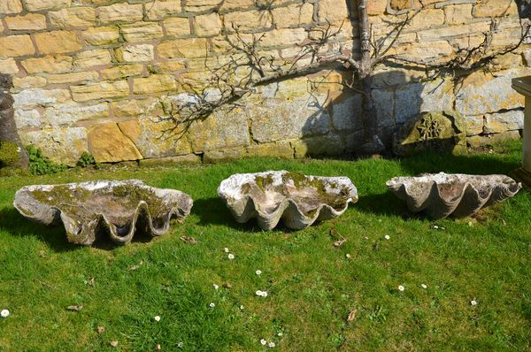A suite of three late 19th/early 20th century clam shells