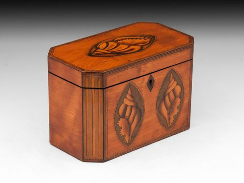 Antique Satinwood Tea Caddy