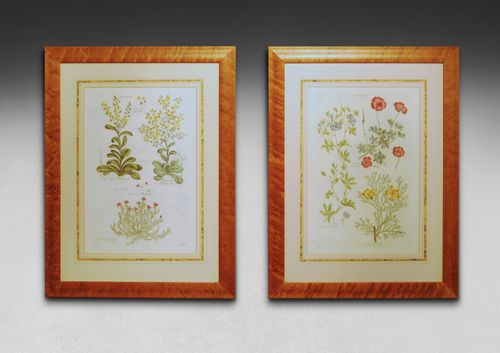 A pair of hand coloured copper plate engravings by John Hill