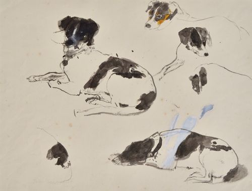 John Sergeant - Studies of a Seated Dog - Wash Drawing