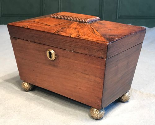 Regency Rosewood Tea Caddy of Sarcophagus Form
