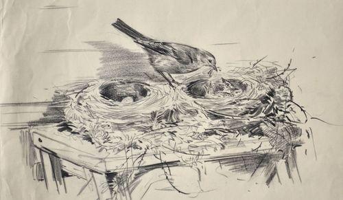 Eileen Soper - Feeding the Chicks - Pencil