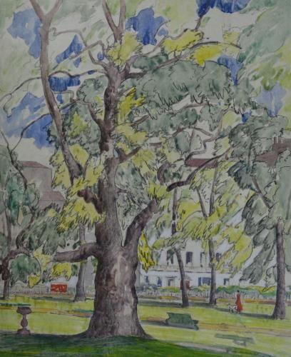 Edith Garner - Plane Trees, Berkeley Sq, London - Watercolour