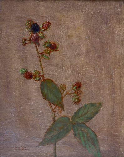 Carolyn Sergeant - Blackberries - oil on board
