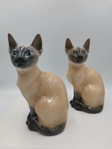 Royal Copenhagen Siamese cats