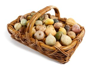 Late 19th early 20th century basket of stone fruit