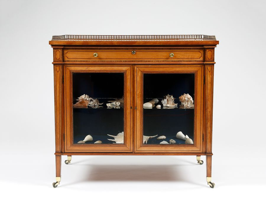 19th Century Satinwood Display Cabinet