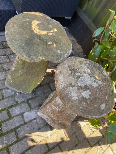 Two Staddle Stones