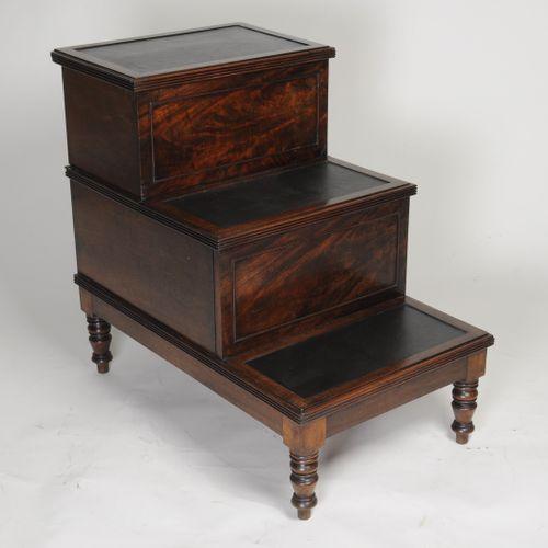 Georgian Mahogany Bed/Library Steps