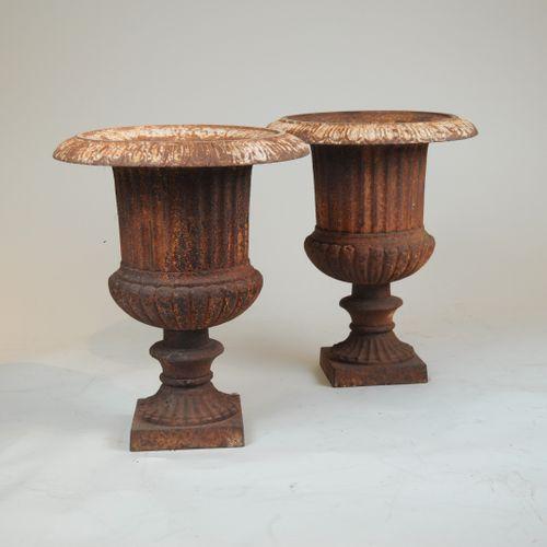 Regency cast iron Urns