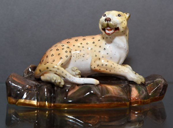 Derby Leopard