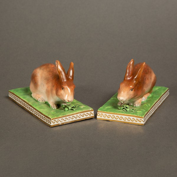 Derby Rabbits